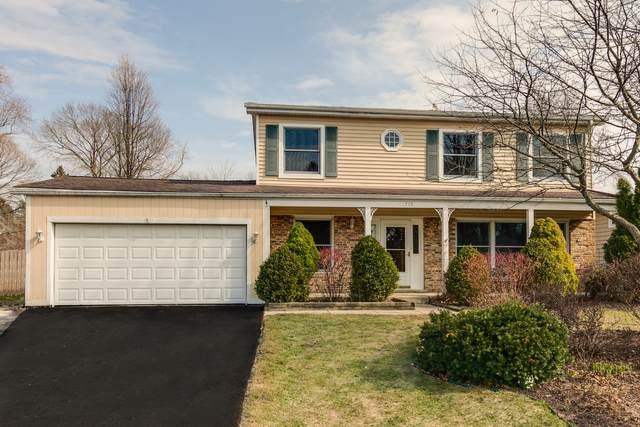 779 Lucerne Court, Mundelein, IL 60060 (MLS #11018784) :: Helen Oliveri Real Estate