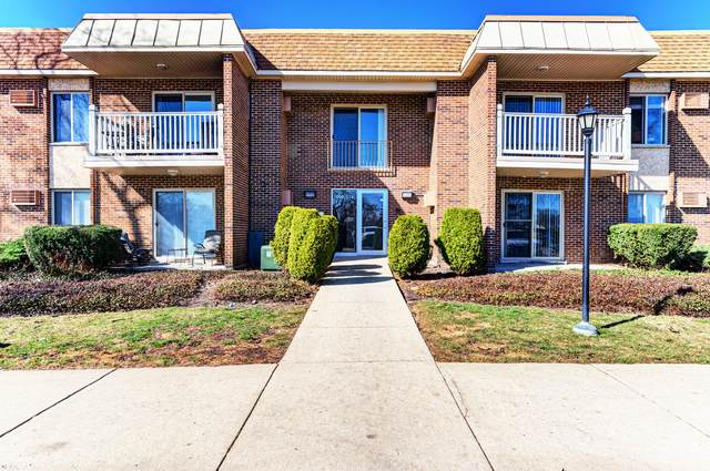500 N Wilke Road #104, Palatine, IL 60074 (MLS #11018840) :: Helen Oliveri Real Estate