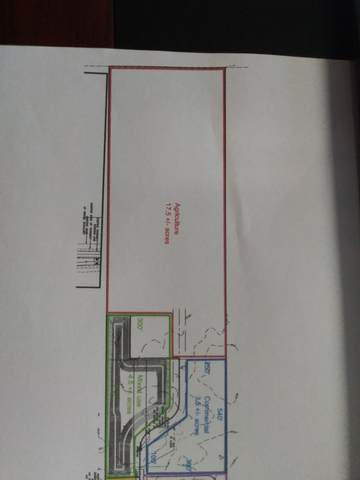 000 Rt 38 Highway, Ashton, IL 61006 (MLS #11019008) :: Helen Oliveri Real Estate