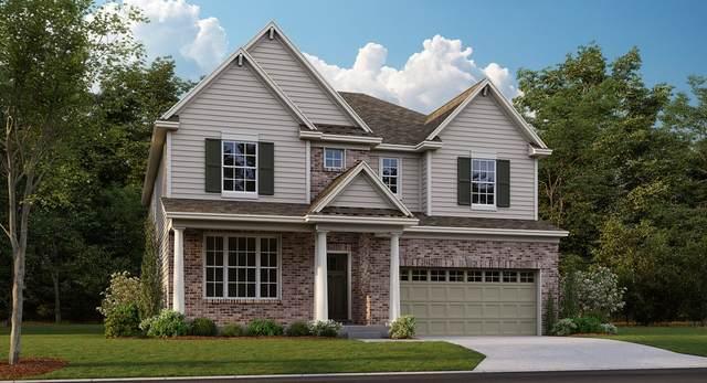 203 Barry Road, South Elgin, IL 60177 (MLS #11019212) :: Helen Oliveri Real Estate