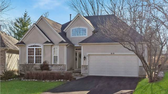 810 Viewpointe Drive, St. Charles, IL 60174 (MLS #11019524) :: Helen Oliveri Real Estate