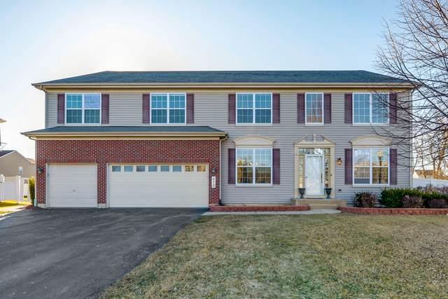 422 Red Cedar Road, Lake Villa, IL 60046 (MLS #11019640) :: Helen Oliveri Real Estate
