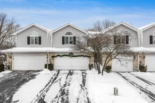 8301 Highpoint Circle B, Darien, IL 60561 (MLS #11019827) :: The Dena Furlow Team - Keller Williams Realty