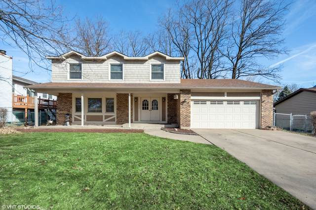 664 Cambridge Way, Bolingbrook, IL 60440 (MLS #11020046) :: Helen Oliveri Real Estate