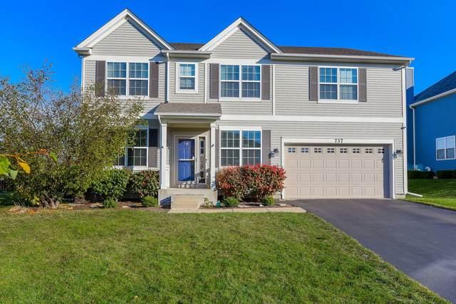 737 Millersburg Street, Oswego, IL 60543 (MLS #11020157) :: Helen Oliveri Real Estate