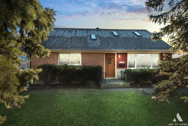 9031 Southfield Drive, Bridgeview, IL 60455 (MLS #11020457) :: Helen Oliveri Real Estate