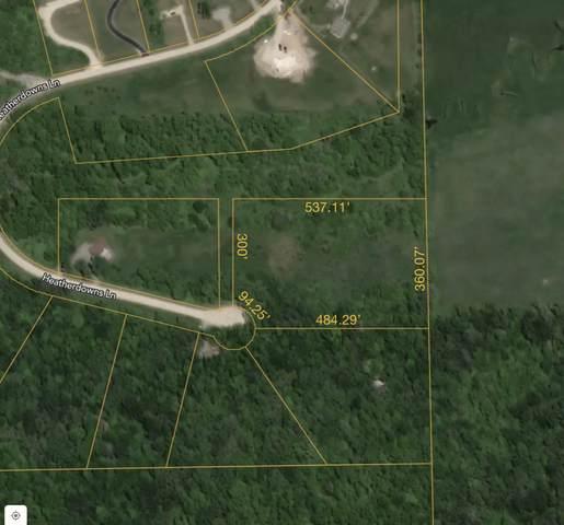 96 Heatherdowns Lane, Galena, IL 61036 (MLS #11020686) :: BN Homes Group