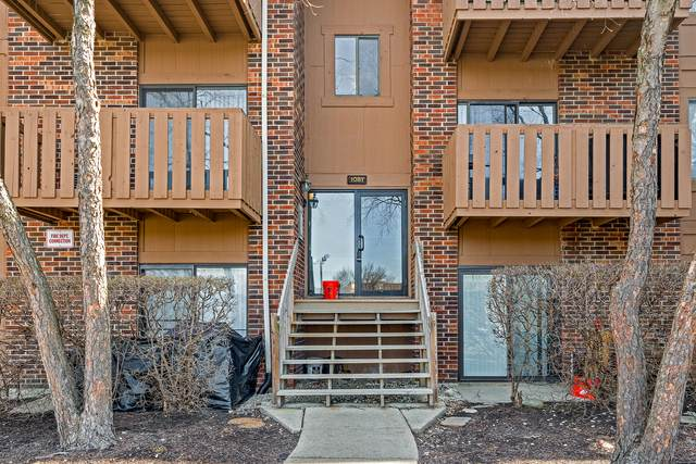 1081 Rodenburg Road #308, Roselle, IL 60172 (MLS #11021247) :: The Dena Furlow Team - Keller Williams Realty