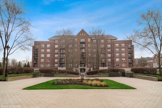 410 W Mahogany Court #308, Palatine, IL 60067 (MLS #11021384) :: Helen Oliveri Real Estate