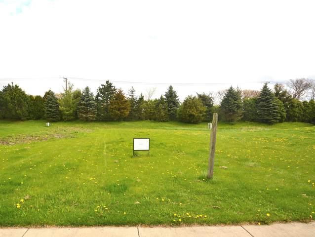 883 Writer Court, Vernon Hills, IL 60061 (MLS #11022721) :: Helen Oliveri Real Estate