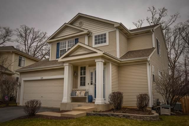 324 N Cornerstone Drive, Volo, IL 60020 (MLS #11022725) :: Helen Oliveri Real Estate