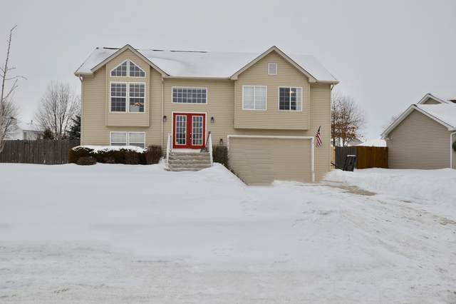 5912 Castlewood Trail, Mchenry, IL 60050 (MLS #11023157) :: The Spaniak Team