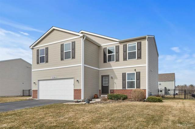 2311 Prairie Grass Lane, Yorkville, IL 60560 (MLS #11023434) :: The Dena Furlow Team - Keller Williams Realty