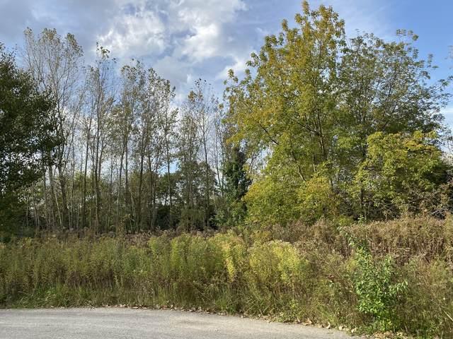 6202 Balsam Court, Long Grove, IL 60047 (MLS #11023669) :: Helen Oliveri Real Estate