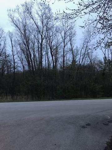 6402 W Rawson Bridge Road, Cary, IL 60013 (MLS #11023980) :: Lewke Partners