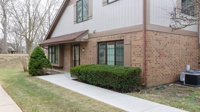 7913 Oak Knoll Lane, Palos Heights, IL 60463 (MLS #11024059) :: The Dena Furlow Team - Keller Williams Realty