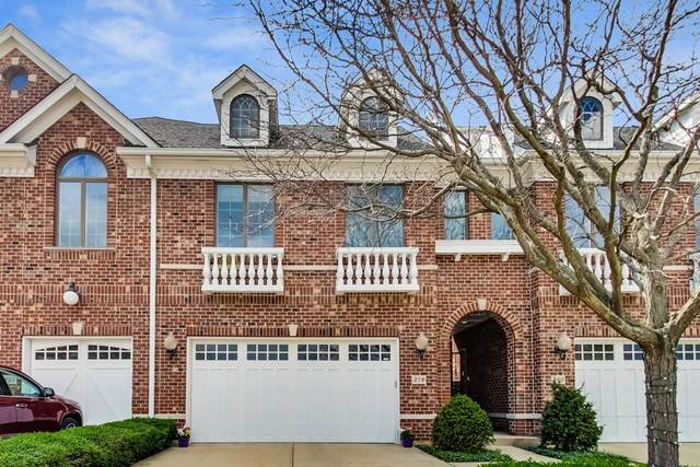 359 Arbor Glen Boulevard, Schaumburg, IL 60195 (MLS #11024229) :: Ryan Dallas Real Estate