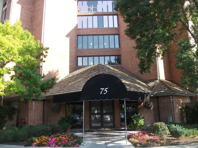 75 Kristin Circle #603, Schaumburg, IL 60195 (MLS #11024300) :: Littlefield Group