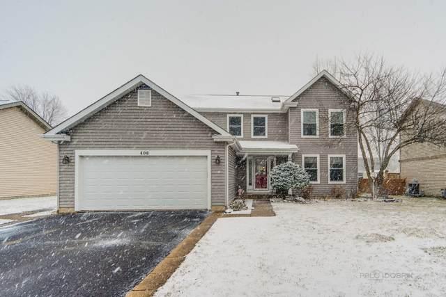 408 Indian Ridge Trail, Wauconda, IL 60084 (MLS #11024641) :: Helen Oliveri Real Estate