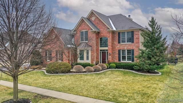 781 Fox Run Drive, Geneva, IL 60134 (MLS #11025251) :: Helen Oliveri Real Estate