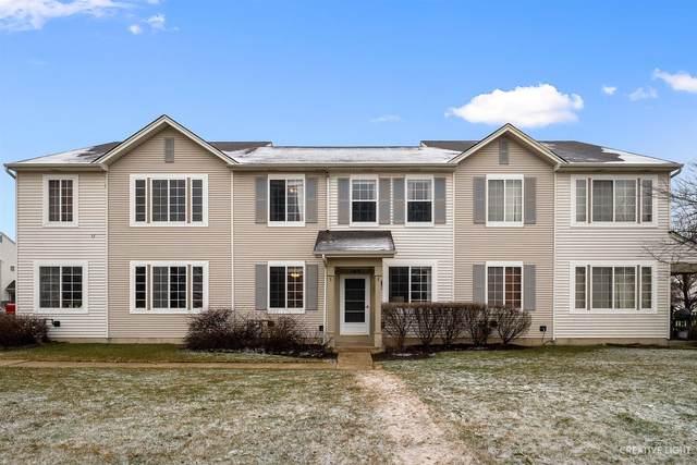 164 Azalea Circle, Romeoville, IL 60446 (MLS #11025499) :: RE/MAX IMPACT