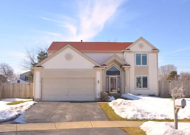 1541 Tara Belle Parkway, Naperville, IL 60564 (MLS #11025936) :: Helen Oliveri Real Estate