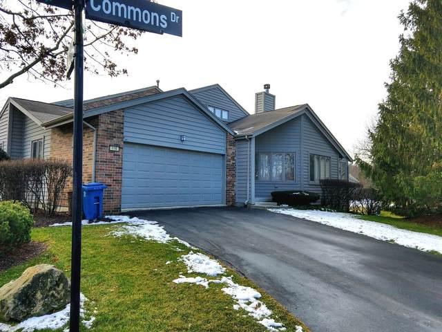 116 Commons Drive, Palos Park, IL 60464 (MLS #11026170) :: The Dena Furlow Team - Keller Williams Realty