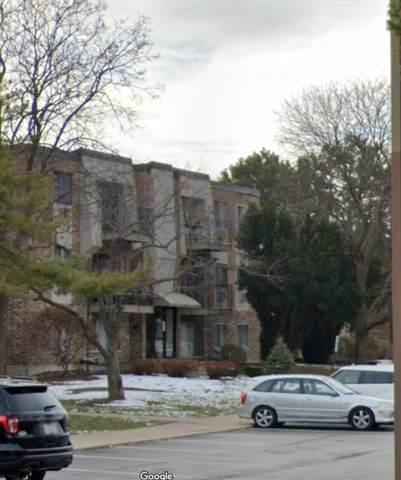 1451 N Winslowe Drive #301, Palatine, IL 60074 (MLS #11026490) :: The Dena Furlow Team - Keller Williams Realty
