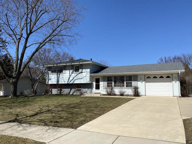 503 Brockton Lane, Schaumburg, IL 60193 (MLS #11027129) :: Helen Oliveri Real Estate
