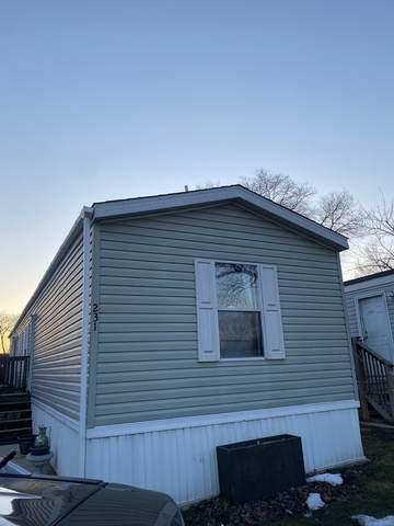 430 W Touhy Avenue #231, Des Plaines, IL 60018 (MLS #11027148) :: Helen Oliveri Real Estate