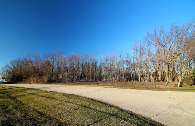 Lot 3 Walnut Drive, Yorkville, IL 60560 (MLS #11027324) :: O'Neil Property Group