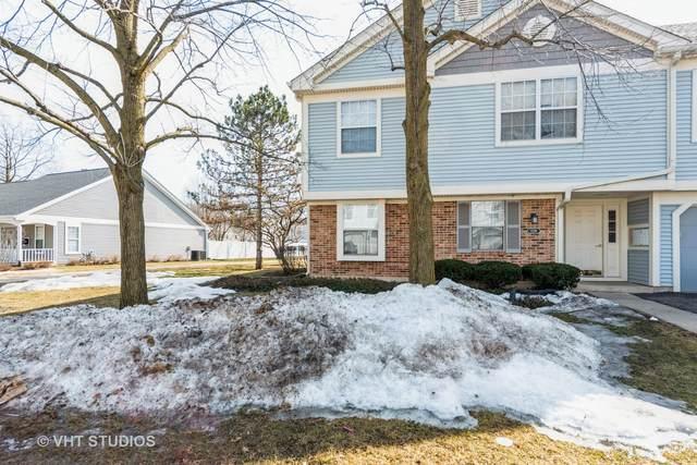 1228 Bradwell Lane C, Mundelein, IL 60060 (MLS #11028287) :: Helen Oliveri Real Estate