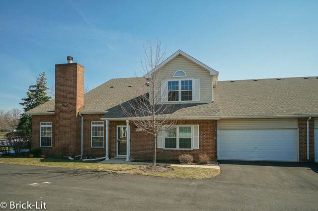 9767 Cambridge Circle, Mokena, IL 60448 (MLS #11028291) :: The Spaniak Team