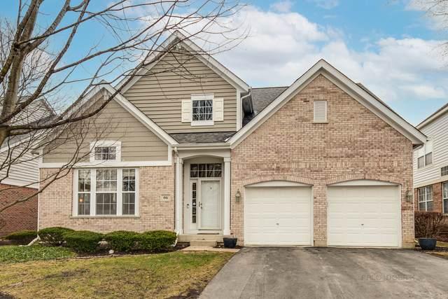 461 Valhalla Terrace, Vernon Hills, IL 60061 (MLS #11028382) :: Helen Oliveri Real Estate