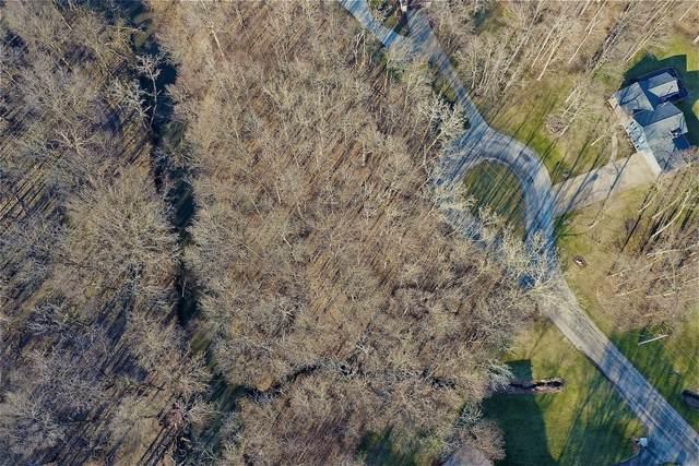 11 Gregory Lane, Lexington, IL 61753 (MLS #11028726) :: Janet Jurich