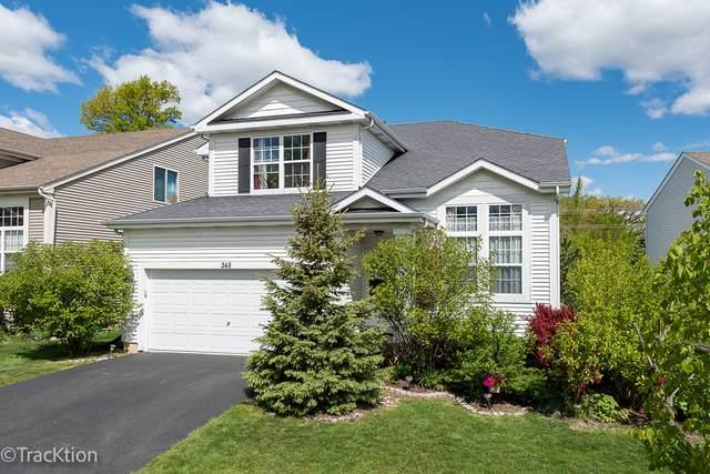 248 N Cornerstone Drive, Volo, IL 60020 (MLS #11029354) :: BN Homes Group