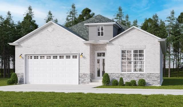 206 Donmor Drive, Bloomingdale, IL 60108 (MLS #11029587) :: RE/MAX IMPACT