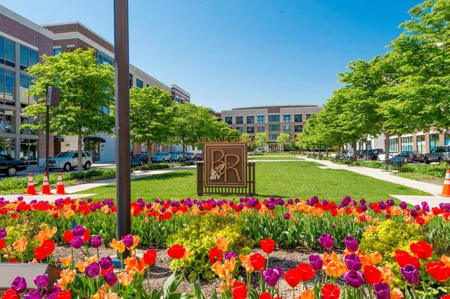1000 Village Center Drive #214, Burr Ridge, IL 60527 (MLS #11029924) :: The Wexler Group at Keller Williams Preferred Realty