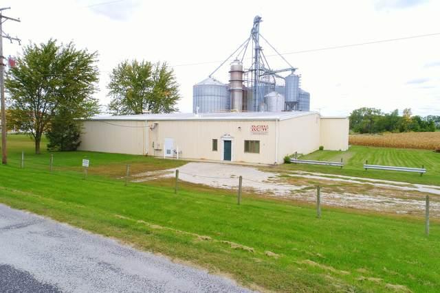 215 E Van Alstyne Street, Cullom, IL 60929 (MLS #11030575) :: The Wexler Group at Keller Williams Preferred Realty