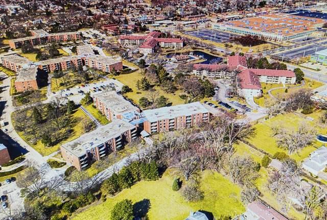 1605 E Central Road 212B, Arlington Heights, IL 60005 (MLS #11030722) :: Helen Oliveri Real Estate