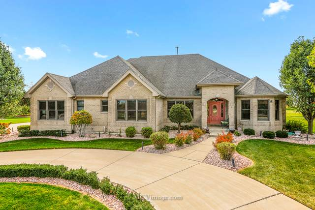 7835 W San Marco Court, Monee, IL 60449 (MLS #11030748) :: Helen Oliveri Real Estate