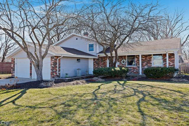 53 Berkshire Drive, Crystal Lake, IL 60014 (MLS #11030924) :: Helen Oliveri Real Estate