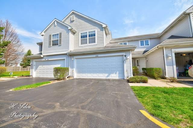 2132 Orchard Lane #2132, Carpentersville, IL 60110 (MLS #11031785) :: Ryan Dallas Real Estate