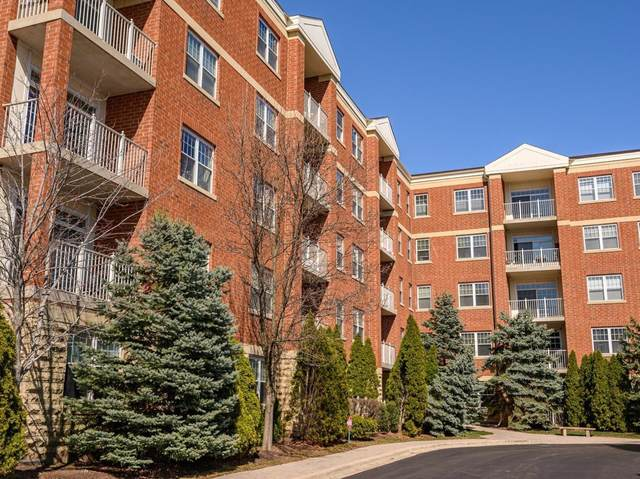 1 Itasca Place #113, Itasca, IL 60143 (MLS #11031834) :: Littlefield Group