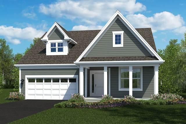 204 Lot 3 E. George Street, Itasca, IL 60143 (MLS #11032167) :: RE/MAX IMPACT