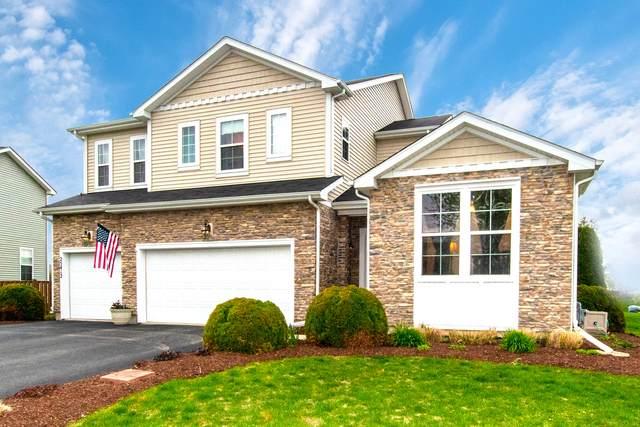 25412 Springview Court, Plainfield, IL 60544 (MLS #11032870) :: Helen Oliveri Real Estate