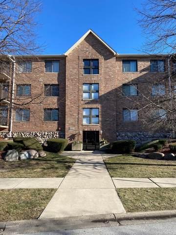 11001 Deblin Lane #202, Oak Lawn, IL 60453 (MLS #11033025) :: RE/MAX IMPACT