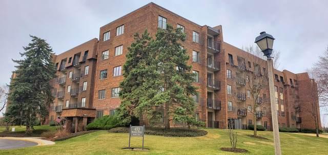 453 Raintree Drive 3B, Glen Ellyn, IL 60137 (MLS #11033069) :: Littlefield Group