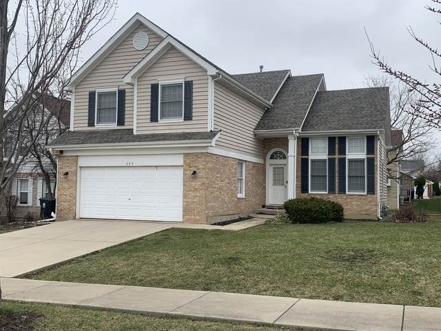 209 Biscayne Street, Bloomingdale, IL 60108 (MLS #11033221) :: The Perotti Group