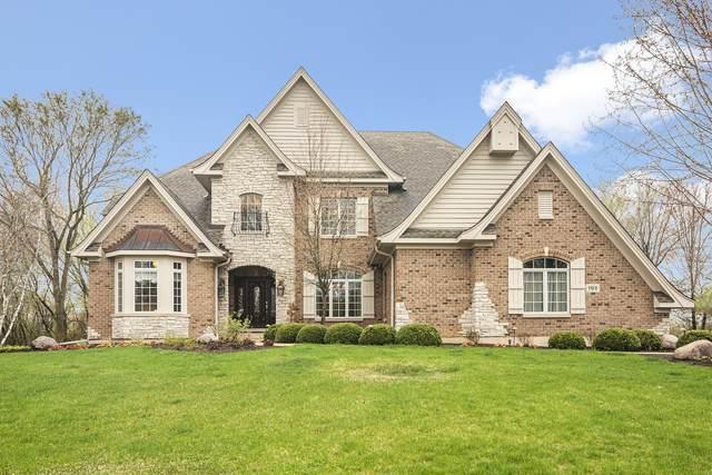 103 Equestrian Way, Hawthorn Woods, IL 60047 (MLS #11033466) :: Helen Oliveri Real Estate